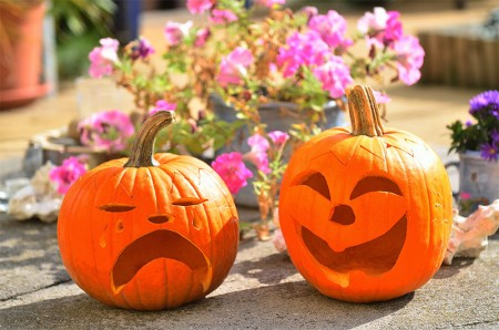 No Halloween Sweets for You! Only Healthy Halloween Treats