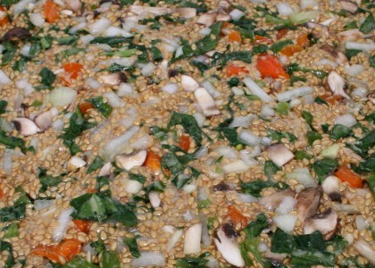 Summer Raw Flax Pizza Crust